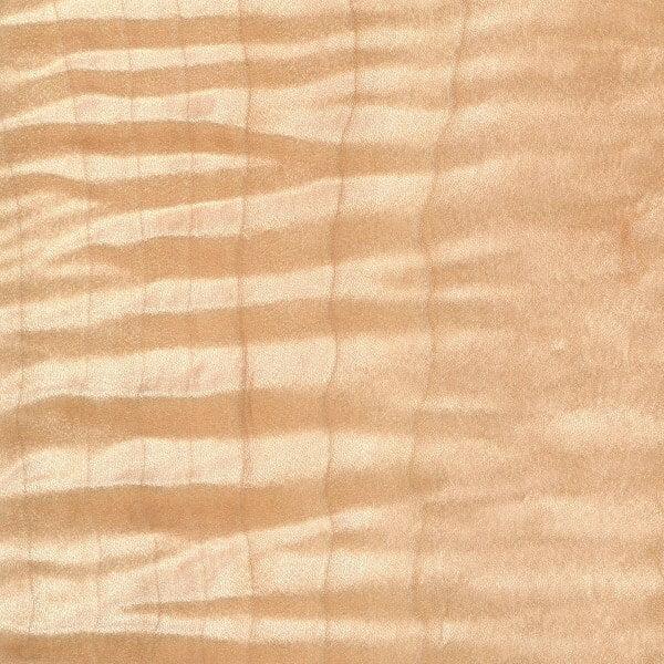 Tiger Maple Wood Sample