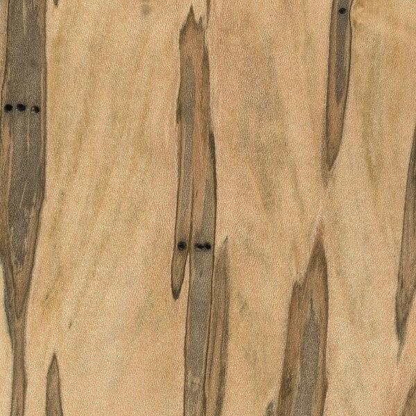Wormy Maple Wood Sample